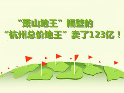 123亿!杭州总价地王!