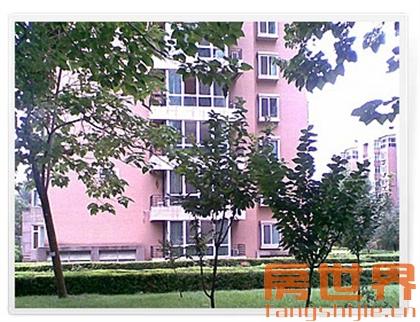 临浦西江塘小区,57方只卖70万,临浦镇小、镇中学区房