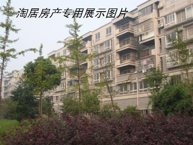 临浦南秀苑毛坯、黄金楼层、无税低价出售