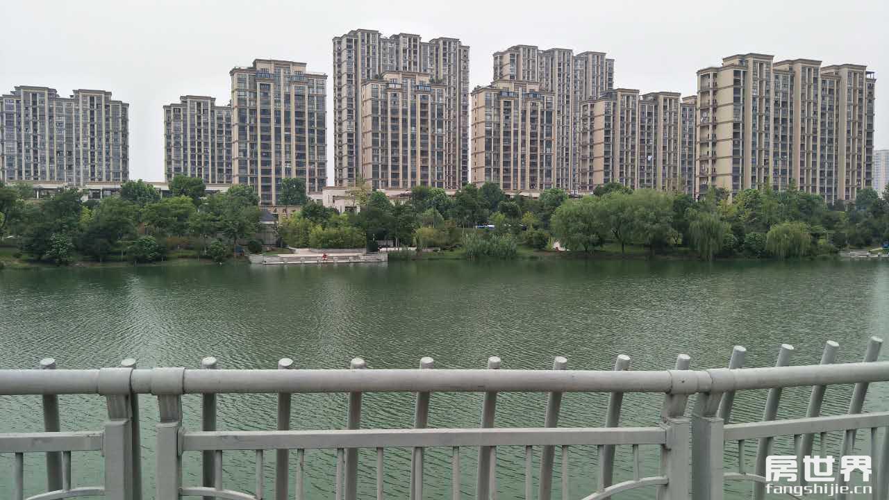 高桥初中学区房,城南品质最高的小区,LOFT户型买一层送一层。